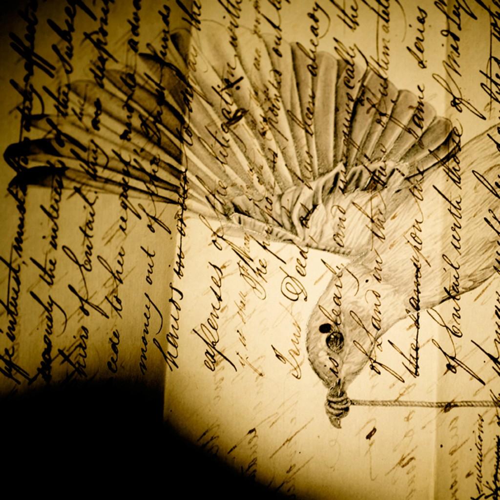 Harriet GreyBird Letter