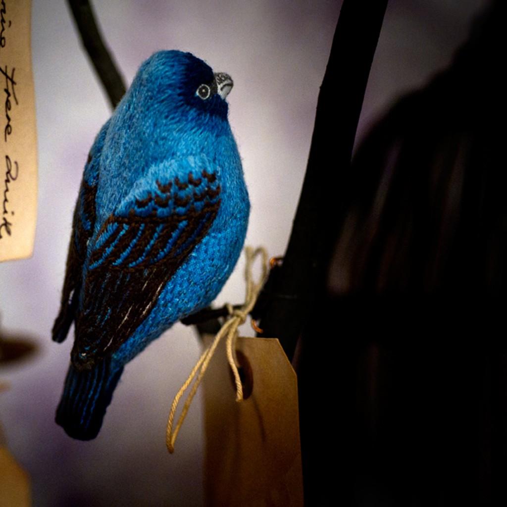 Catherine Frere SmithIndigo Bunting Bird