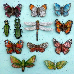 corinne-young-insect-collection